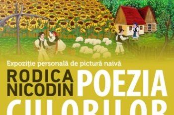 expo Rodica Nicodin - afis presa